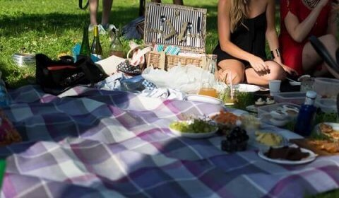 picnic recipes